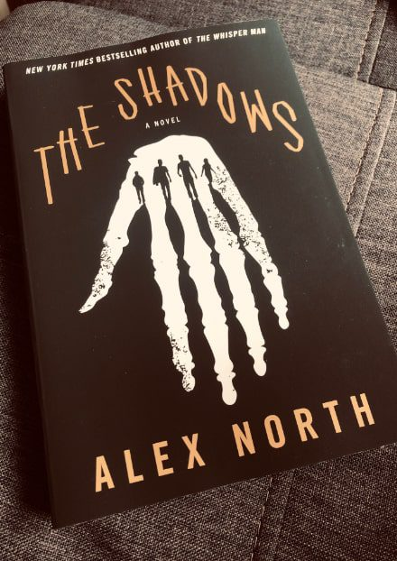 the-shadows-book-cover-min