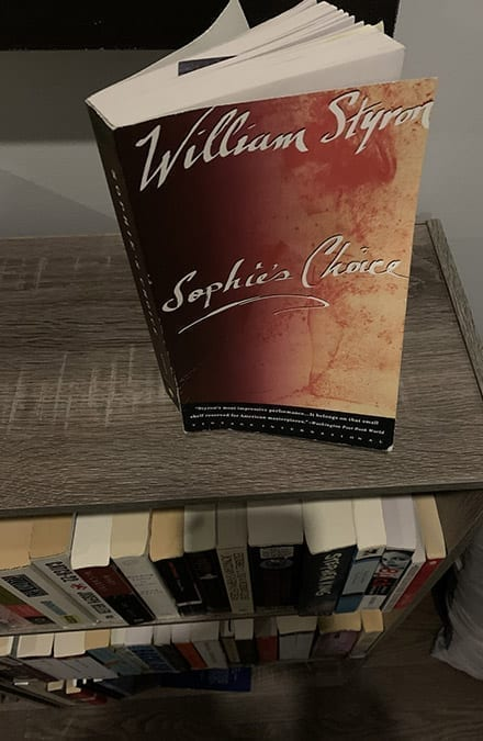 sophies' choice book on bookstand