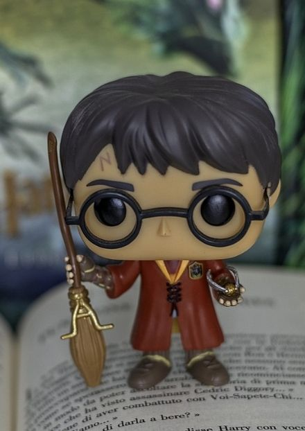 Harry Potter action figure with book background - Photo credit Maurygraf from Pixabay